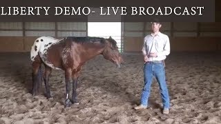 LIVE Liberty Demo with 6 Year Old Stallion