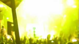 Bassnectar - Pennywise Tribute Singalong @ Electric Forest 2012 [HD]