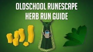 Herb run guide OSRS