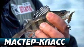 """Микроджиг. Ловля Окуня Поздней Осенью. Мастер-Класс """"О рыбалке всерьёз"""" видео 247."""