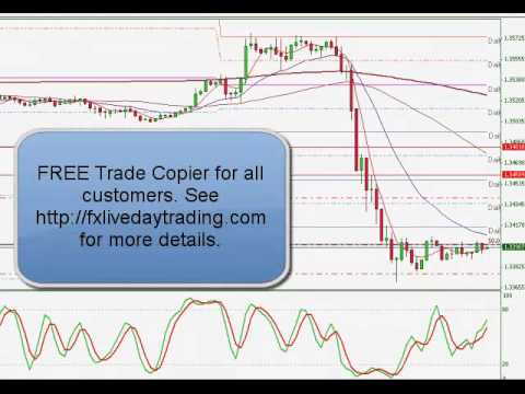 FX Live Day Trading Live Forex Trading Room Results | 02/07/2013