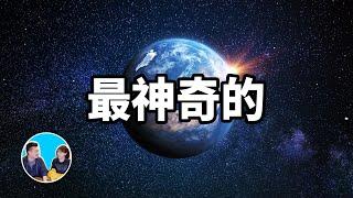 最神奇的星球,地球以及人類存在的真正原因 | 老高與小茉 Mr & Mrs Gao