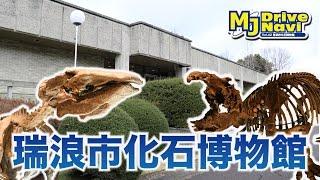 1000種類の化石を展示!化石発掘も出来る!瑞浪市化石博物館を取材してきた!【MJぎふ】