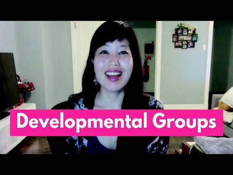 Developmental Groups- Parallel, Project, Egocentric-Cooperative, Cooperative