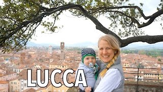 Lucca: Trees on Top of Guinigi Tower & Massive City Walls
