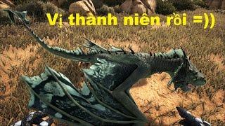 ARK: Scorched Earth #13 - Rồng con Wyvern Baby đã lớn, thành rồng Vị thành niên =))