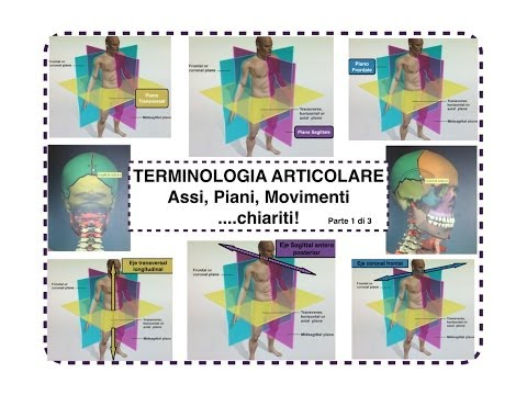 Danza terapia in video ernia intervertebrale