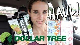 DOLLAR TREE HAUL! 6-27-19 HEALTHY FOOD FINDS?