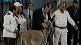 تحميل اغاني سيد زيان وكلمة قوية في حق مصر على المسرح MP3