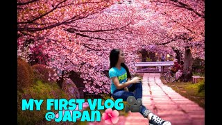 CHERRY BLOSSOMS IN THE PHILIPPINES🌺|FIRST VLOG🎥