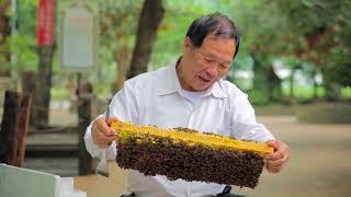 宏基蜜蜂生態農場《這股濃濃的鄉情,冀望能飄香於國際》