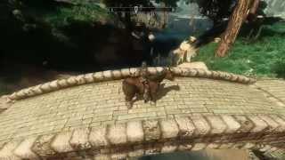 Skyblivion Cyrodiil gameplay