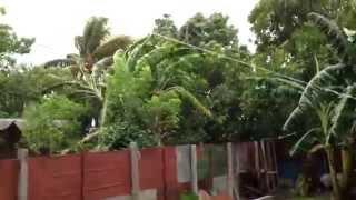 preview picture of video 'Fuerte viento en Ciego Montero'