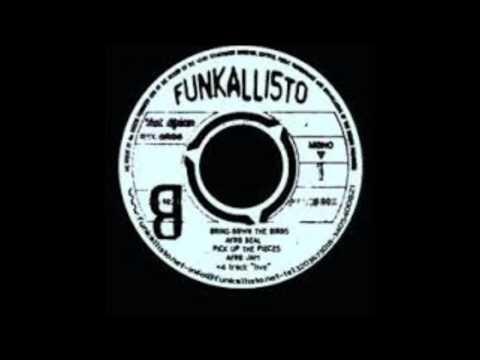 Funkallisto - Bring Down The Birds