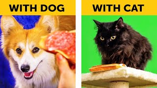 LIFE WITH DOG VS LIFE WITH CAT. Corgi life    Relatable facts by 5-Minute FUN