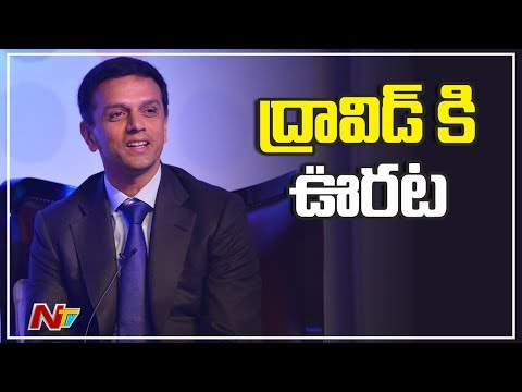 Rahul Dravid Cleared of Conflict of Interest by BCCI Ethics Officer   NTV Sports