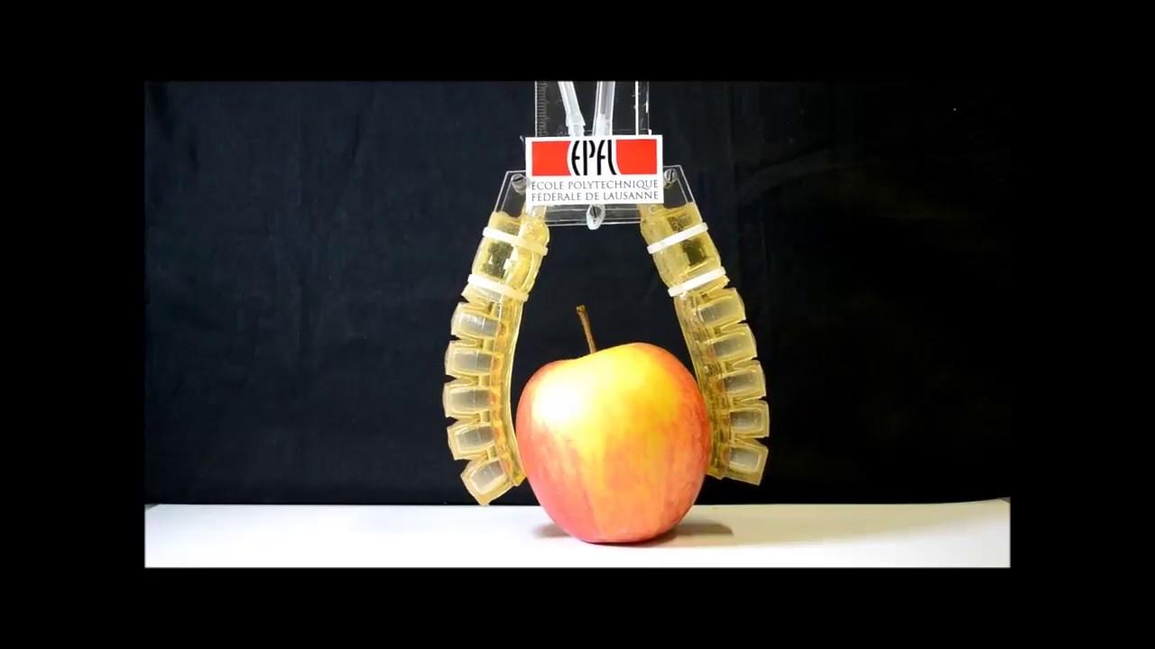 В Швейцарии разработан первый съедобный робот