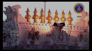 Tiruvarur Vaidyanathan Vibrations Concert Nadaneerajanam, Tirupati