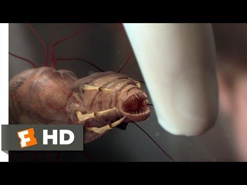 Parasites sa needles