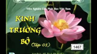 Kinh Trường Bộ HT.Thích Minh Châu Dịch  Tập 1