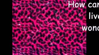 What If - Cheetah Girls Lyrics.wmv