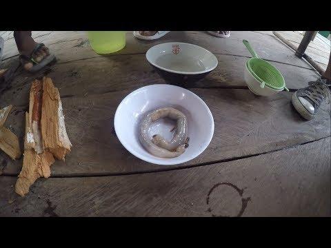 Hugas ng katawan mula sa parasites Castor oil