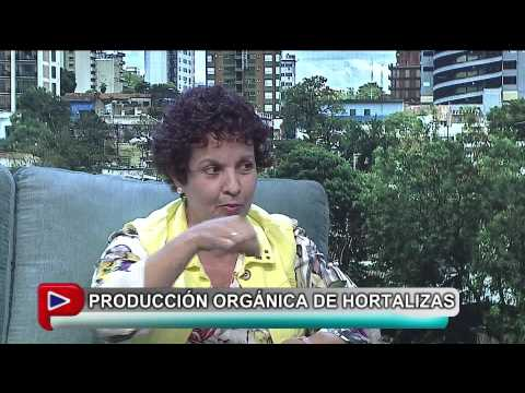 Entrevista a una productora orgánica de hortalizas