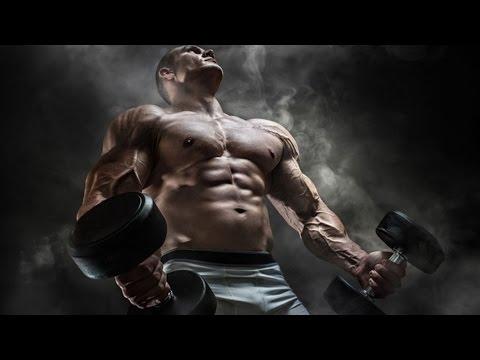 Améliore la restitution des muscles