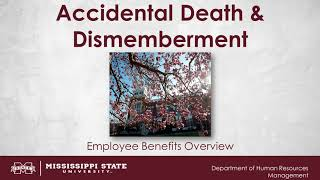 Accidental Death and Dismemberment Video