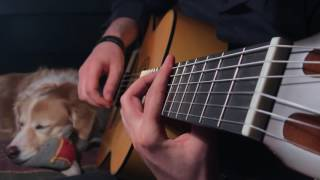 The Last Of Us Fingerstyle Guitar Main Theme