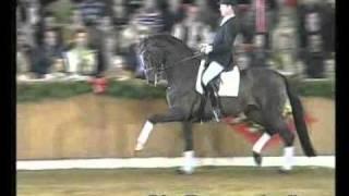 Video von Sir Donnerhall I