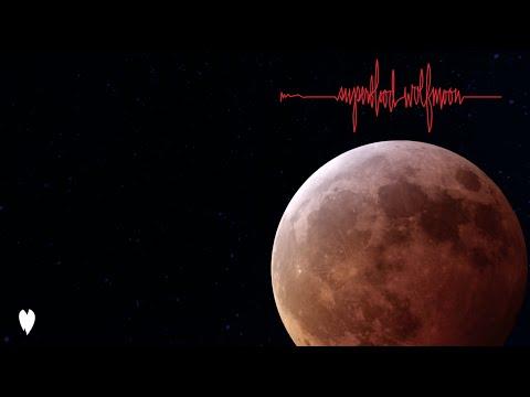 Pearl Jam - Superblood Wolfmoon
