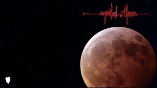Pearl Jam Superblood Wolfmoon (Edited)