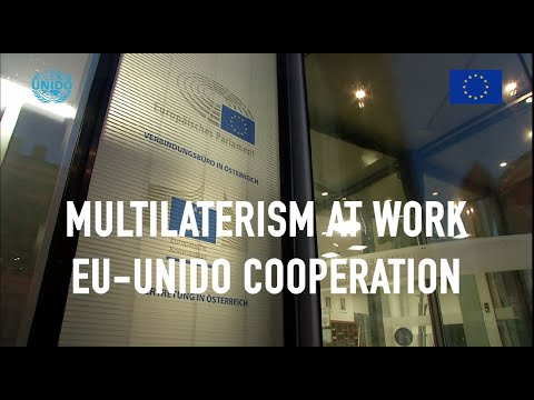 EU - UNIDO Coorperation Panel discussion