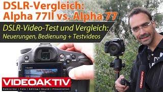 Sony Alpha 77II - die DSLR-Kamera für Fotografen und Filmer