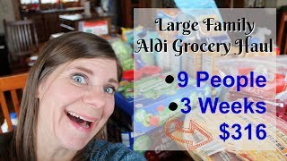 LARGE FAMILY Aldi Grocery Haul🛍 & Meal Plan