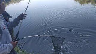 Подсачек для рыбалки длинные о рыбалке