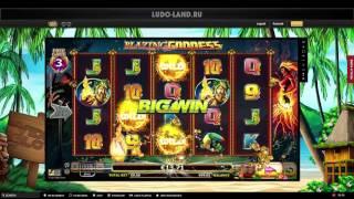 Лудовод в казино Videoslots