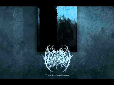 Woods of Desolation - November online metal music video by WOODS OF DESOLATION