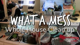 WHAT A MESS / WHOLE HOUSE CLEAN-UP