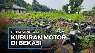 Penampakan 'Kuburan Sepeda Motor' di Bekasi, 20 Tahun Menumpuk Hingga Berselimut Ilalang