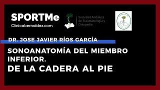 Sonoanatomía del Miembro Inferior. De la Cadera al Pie. - Dr José Javier Ríos | Sportme&SATO