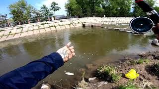 Рыбалка на реке кача красноярский край
