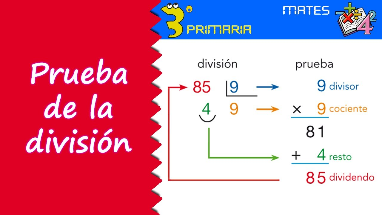 Matemáticas. 3º Primaria. Tema 8. Prueba de la división