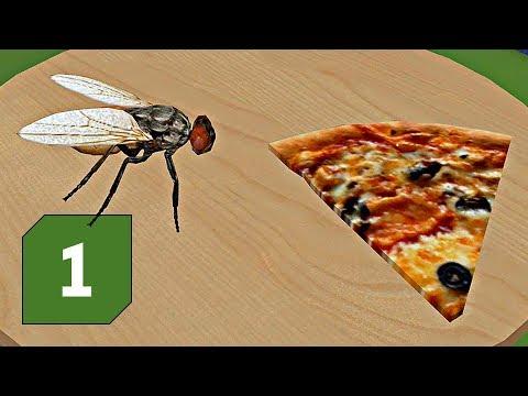 Fly Simulator │ Pizzerie plná much