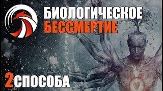 Как Стать БЕССМЕРТНЫМ (биологическое бессмертие) FIT4LIFE Денис Борисов