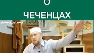 Дагестанец  о Чеченцах