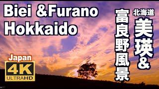 [4K]富良野&美瑛•BeautifulnatureFurano&BieiinHokkaido美しい丘の北海道富良野観光美瑛観光