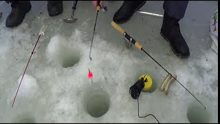 Снасти для зимней рыбалки на навагу