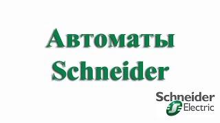 Аппараты фидерные 1-пол iнв 63а iнр 10а ва63 schneider-electric